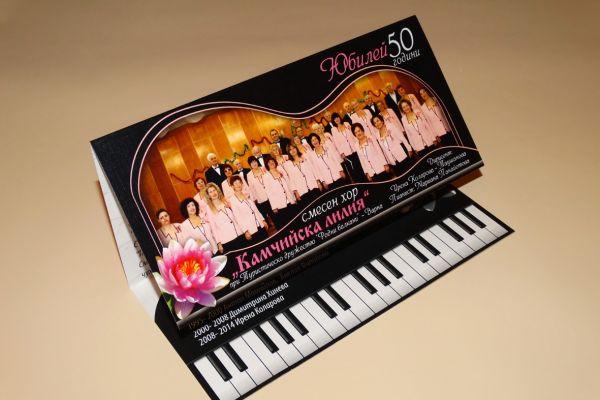 pokana-koncert08692ADC-044A-5B40-E3BB-DE18316B6C35.jpg