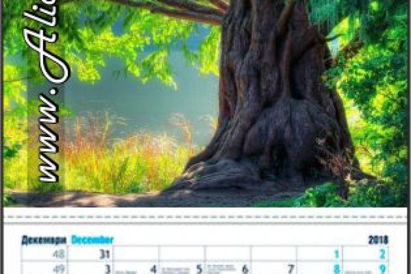 kalendar-z1-aliansiC40C6890-0CE4-9EDA-7CB4-69AD1700D329.jpg